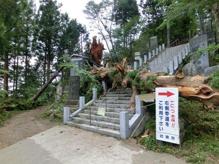 201111292.JPG